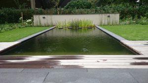 Tuin met natuurzwembad